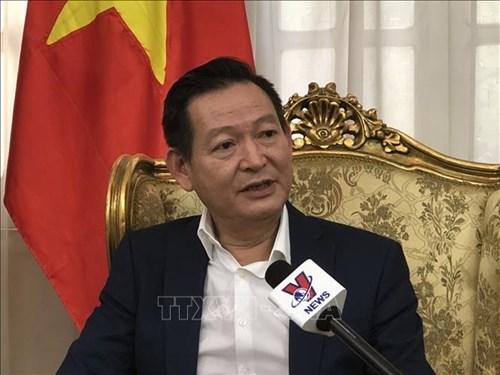 越南驻埃及大使馆协助旅埃越南人度过疫情难关 hinh anh 1
