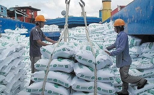 越南工贸部:4月份越南大米出口配额40万吨 hinh anh 1