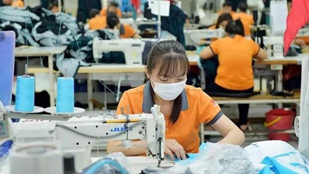 为越南纺织服装业化解原辅料短缺难题: (一)实施供应结构调整 hinh anh 1