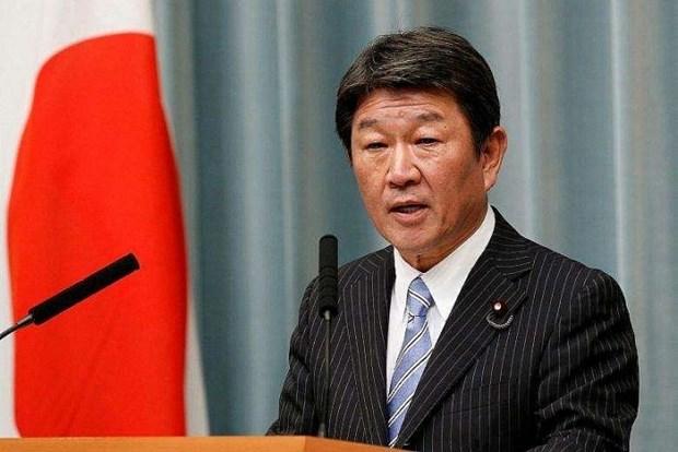 2020东盟轮值主席国年:日本高度评价越南担任东盟轮值主席国期间的领导作用 hinh anh 1