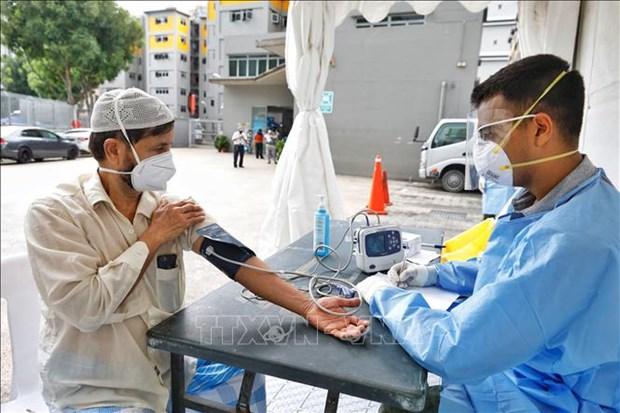 新冠肺炎疫情:新加坡确诊两例越南籍新冠肺炎病例 hinh anh 1