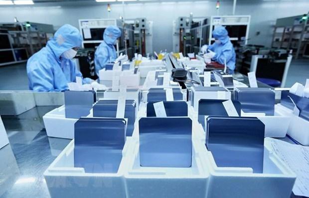 美国企业希望把握在越南投资与合作机会 hinh anh 1