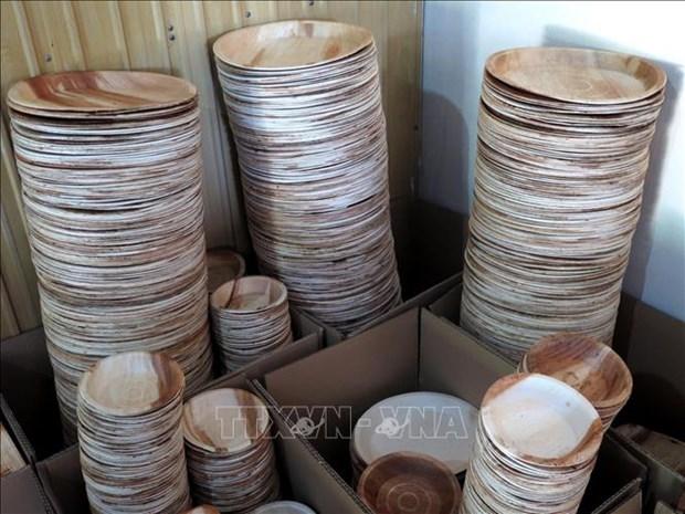 对塑料垃圾说不:槟榔树皮制品受到青睐 hinh anh 1