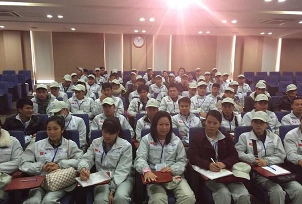 韩国对受疫情影响的国外劳务人员延长劳务合同50天的期限 hinh anh 1