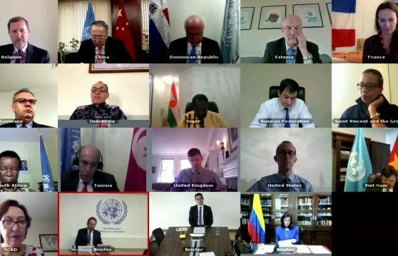 越南出席联合国安理会召开关于叙利亚化学武器问题的会议 hinh anh 1