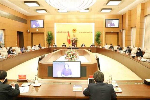 国会主席阮氏金银:尽快完善第十五届国会代表和各级人民议会代表选举提案 hinh anh 2