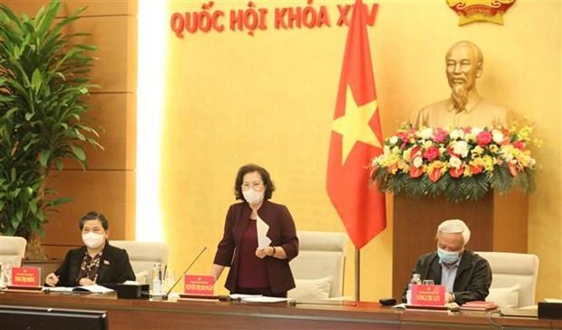 国会主席阮氏金银:尽快完善第十五届国会代表和各级人民议会代表选举提案 hinh anh 1