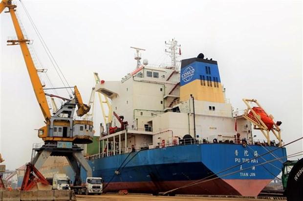 海防港迎接3艘大型货船进港 hinh anh 2