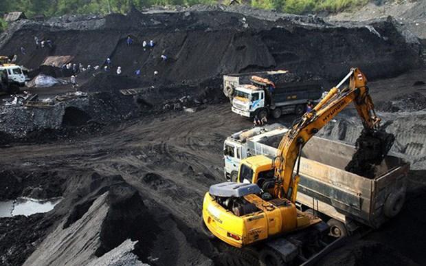 今年第二季度越南煤炭矿业集团力争煤炭产量超千万吨 hinh anh 1