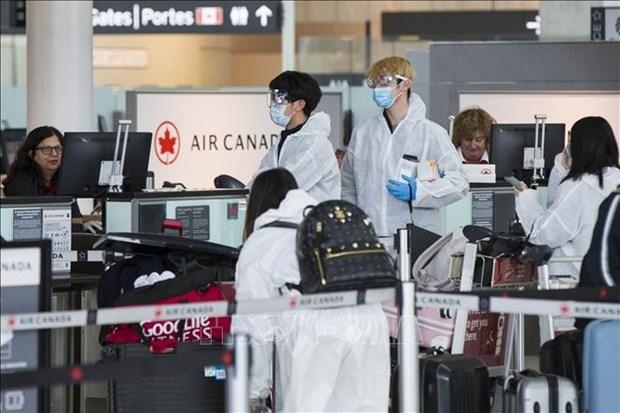 越南驻加拿大大使馆警告公民对未经许可的航班提高警惕 hinh anh 1