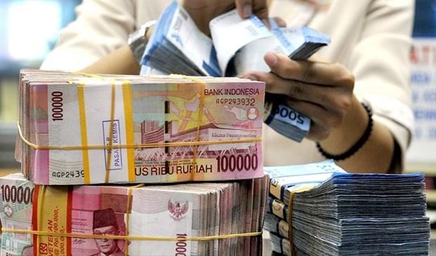 2020年第一季度流入印尼的外国直接投资资金大幅下降 hinh anh 1