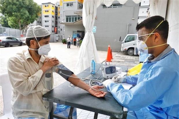 新加坡新冠肺炎确诊病例1万例 老挝连续10天新增新冠肺炎确诊病例为零 hinh anh 1