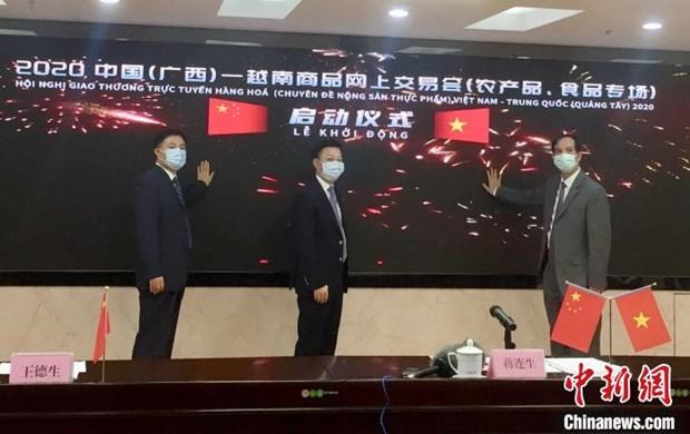 越南与中国(广西)首次举行商品网上交易会 hinh anh 1