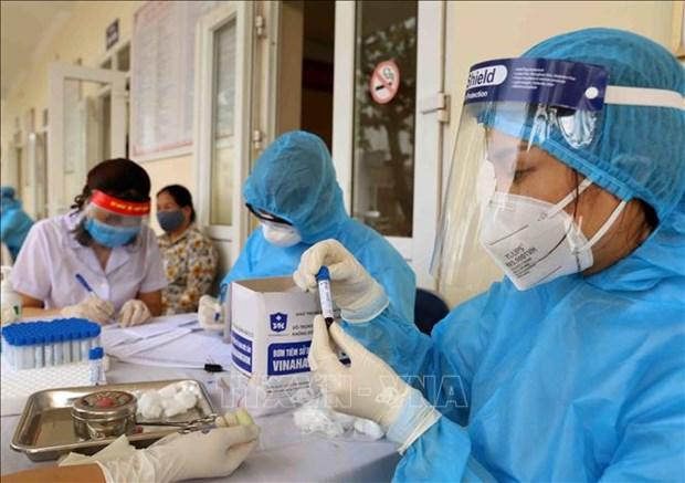 尽早制定越南驻外代表机构成员新冠肺炎诊疗机制 hinh anh 1