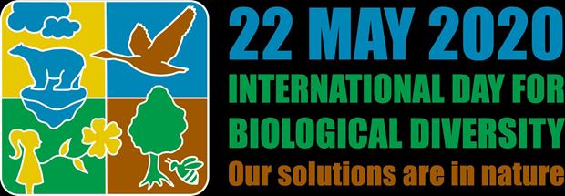 越南举行各项活动响应2020年国际生物多样性日 hinh anh 1