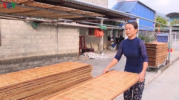 莱州省平吕芭蕉芋粉条-西北地区的手工业名牌 hinh anh 1