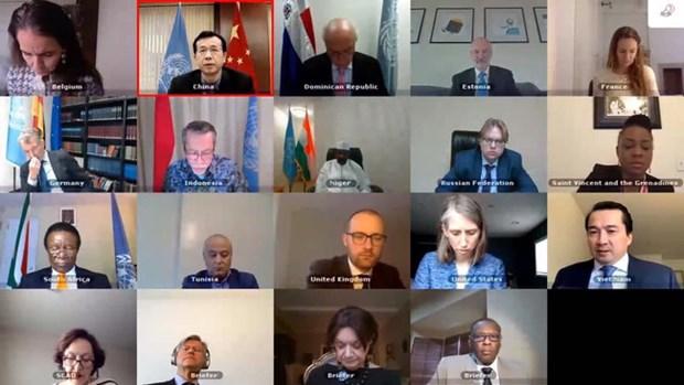 越南出席联合国安理会有关苏丹达尔富尔问题的连线视频会议 hinh anh 1