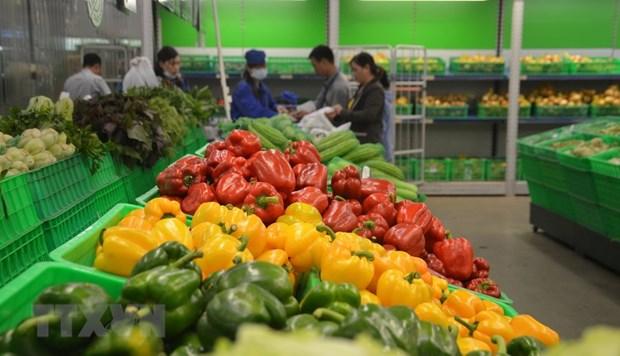 2020年第一季度越南加大对泰国蔬果出口力度 蔬果出口形势喜人 hinh anh 1