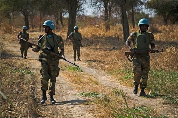 越南支持北、南苏丹通过和平措施解决阿布耶伊争端问题 hinh anh 1