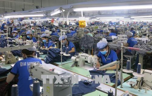 胡志明市在新冠肺炎疫情情况下为企业创造安全的工作环境 hinh anh 1
