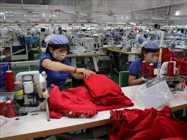越南企业为全国经济的增长做出了重要的贡献 hinh anh 1