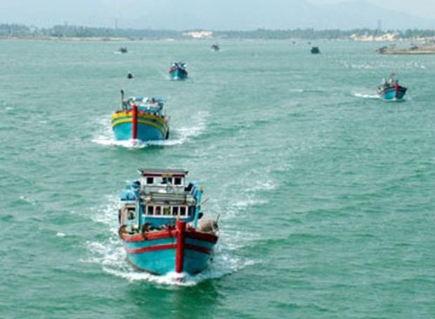 越南渔业协会反对中国在东海实施的捕鱼禁令 hinh anh 1