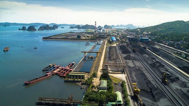 成功实施双重目标帮助煤炭与矿产工业集团在新冠肺炎疫情情况下稳定生产 hinh anh 1