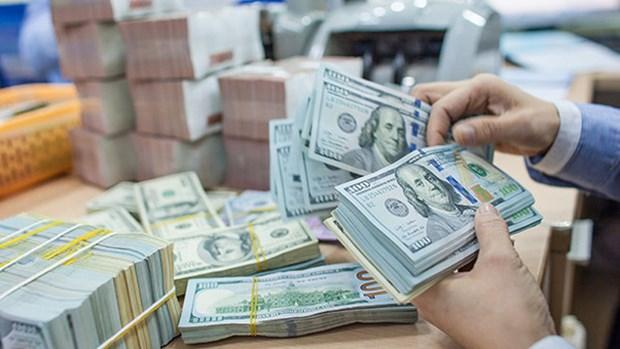 5月4日越盾对美元汇率中间价下调10越盾 hinh anh 1