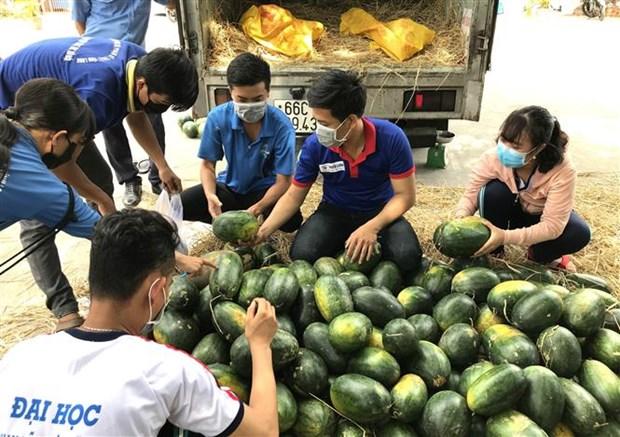 永隆省寻找农产品销售新市场 hinh anh 1