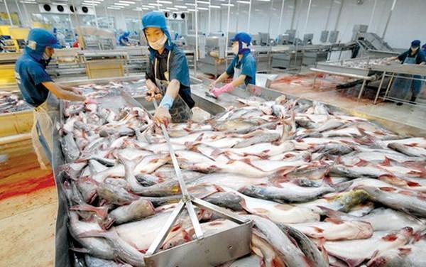 今年前4月越南水产品出口额同比下降10% hinh anh 1