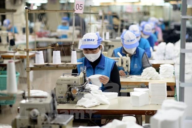 越南纺织服装行业抓住口罩出口的机遇 hinh anh 1
