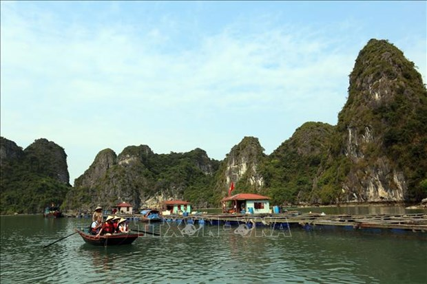 广宁省2020年夏季旅游节暨下龙旅游周将于5月16日开幕 hinh anh 1