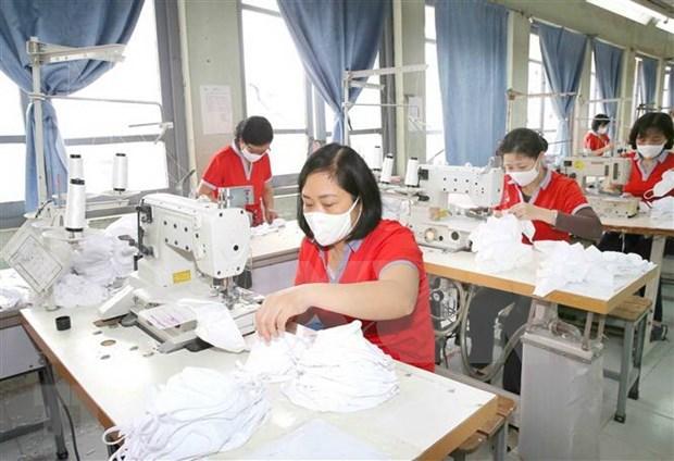 加大对从国外进口的二手口罩生产线和生产设备检查力度 hinh anh 1