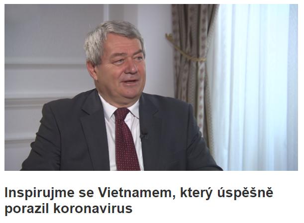捷克众议院第一副议长:越南打败新冠病毒的成功经验值得学习 hinh anh 2