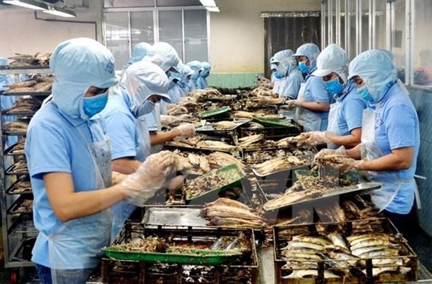 2020年前4月坚江省出口额增长23.6% hinh anh 1