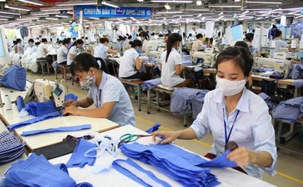 越南企业看好国内市场 hinh anh 1