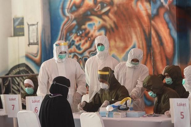 东南亚各国致力降低疫情给经济造成的影响 hinh anh 1