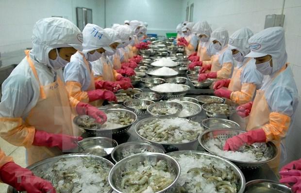 2020年越南虾类出口额有望超过35亿美元 hinh anh 1