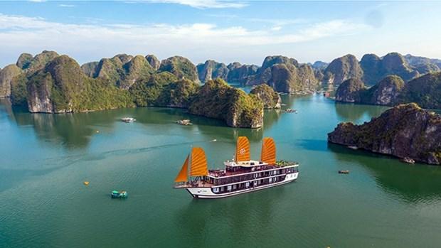 越南旅游业对疫情后创造突破充满信心 hinh anh 1