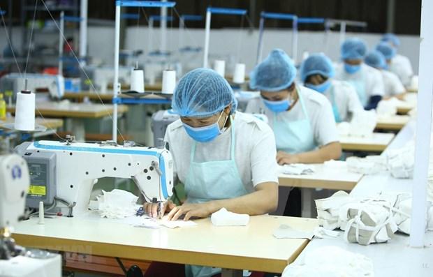 越南纺织服装集中开发潜在市场 hinh anh 1