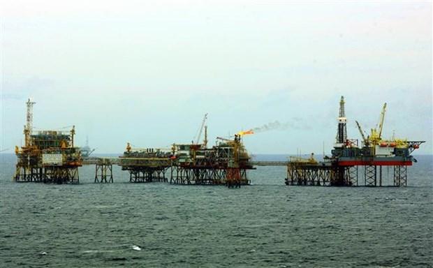 2020年前4月越南石油开采量超出计划7.7% hinh anh 1