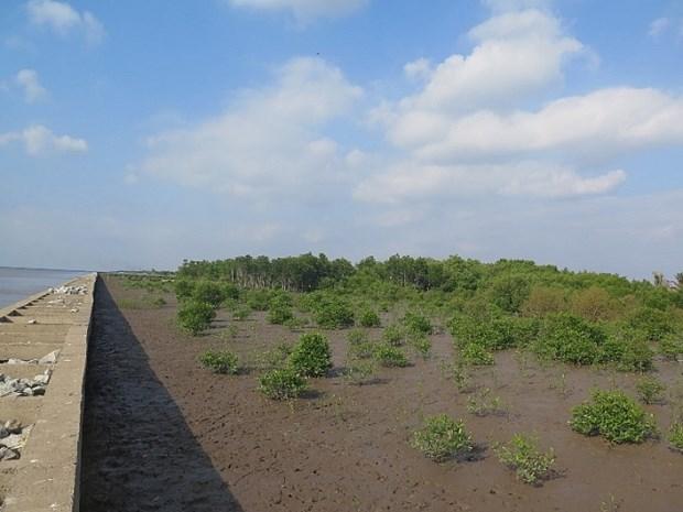 欧盟和法国协助越南应对气候变化和新冠肺炎疫情 hinh anh 1