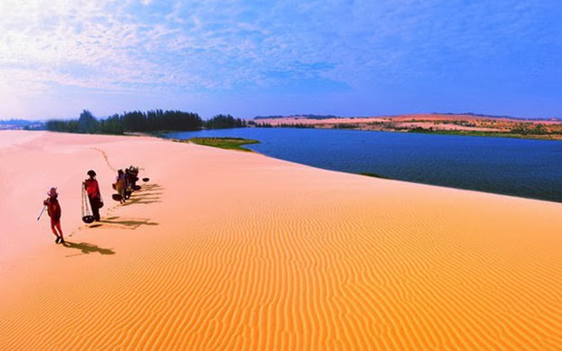 力争2030年使美奈成为 亚太地区首选旅游目的地 hinh anh 1