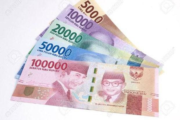 新冠肺炎疫情:印尼金融体系的稳定性受到疫情严重威胁 hinh anh 1