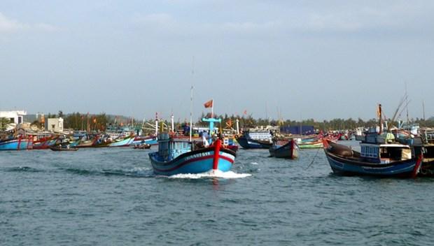 越南广南省渔民继续在传统渔场进行捕捞作业 hinh anh 1