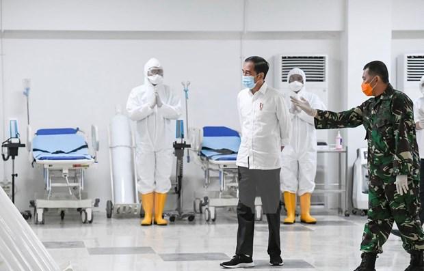 印尼确定防控新冠肺炎疫情的重点 hinh anh 1
