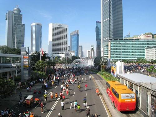 印尼公布总值超过210亿美元的经济复苏计划 hinh anh 1