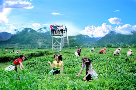 莱州省碳渊县首个农家乐旅游模式 hinh anh 1