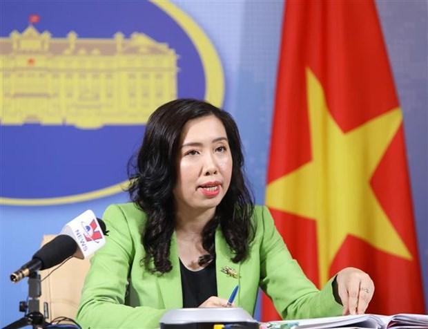外交部发言人:越南禁止任何形式的网络黑客攻击行为 hinh anh 1