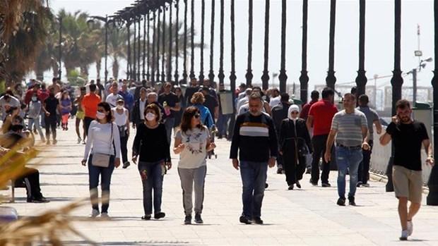 越南呼吁各国和国际组织继续向黎巴嫩提供援助 hinh anh 2